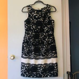 THE LIMITED size 10 white dress with black lace